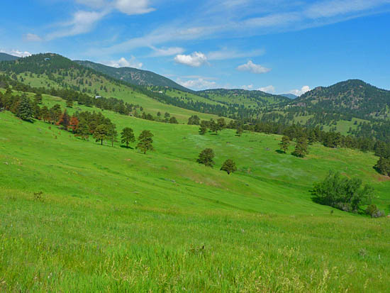 Vast open meadows along the Rawhide Loop Trail